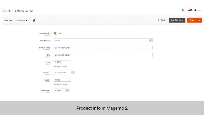 Product info in Magento 2
