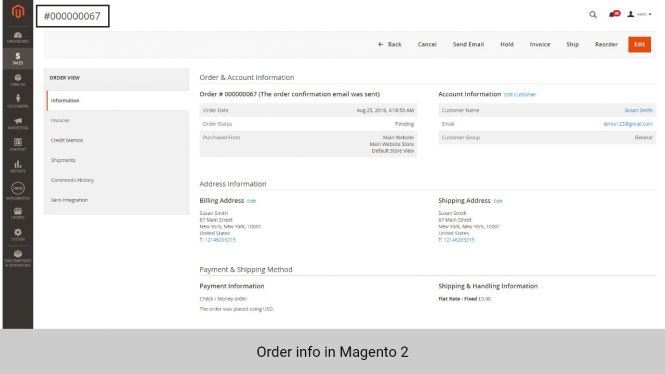 Order info in Magento 2