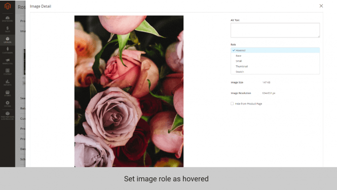 Magento 2 change image on hover set role