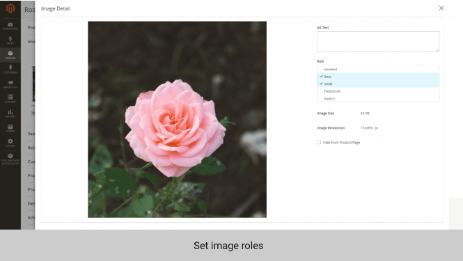 Magento product image extension set image roles