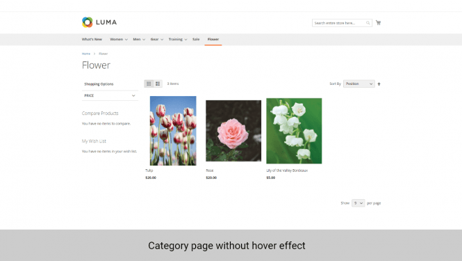 Magento 2 product images category page