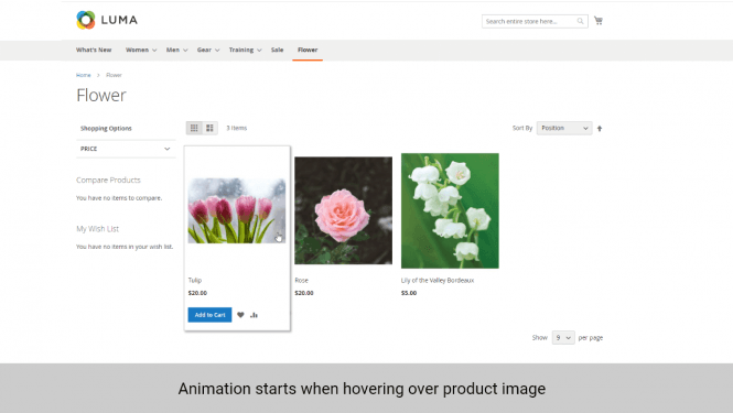 Magento 2 product image animation starts when hovering