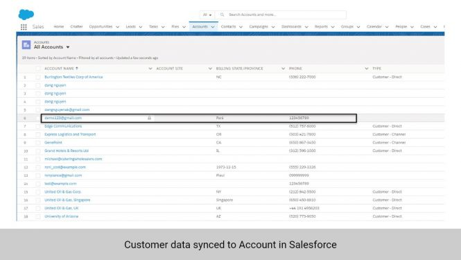 Customer data in Magento 2 synchronized to Accounts in Salesforce CRM