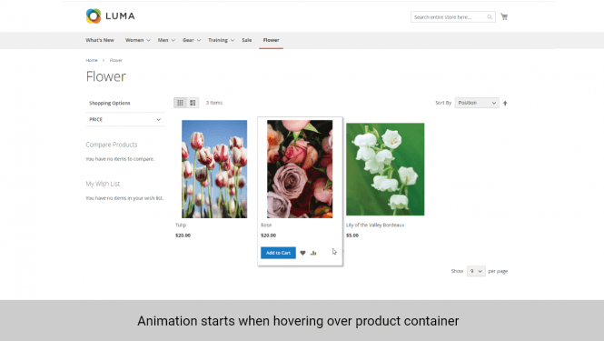 Magento product images animation hovering product container