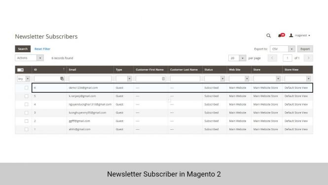 Newsletter Subscriber in Magento 2