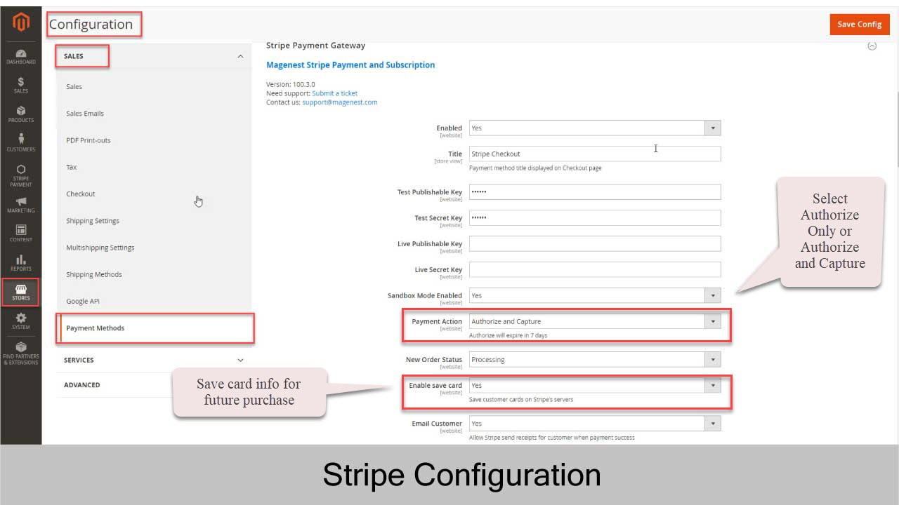 Stripe Payment and Subscription