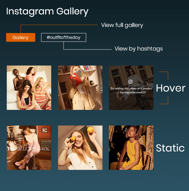 display instagram gallery