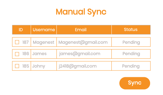 Magento 2 Salesforce Integration manual syncing