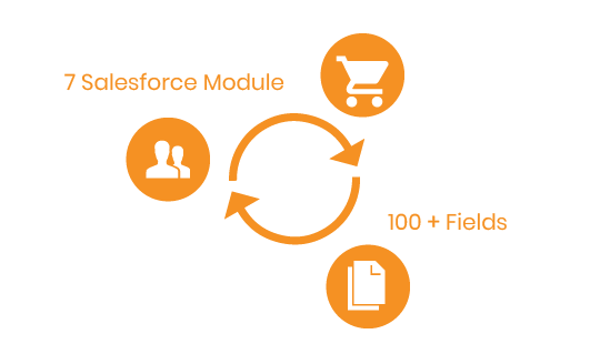 Magento 2 Salesforce Integration various module