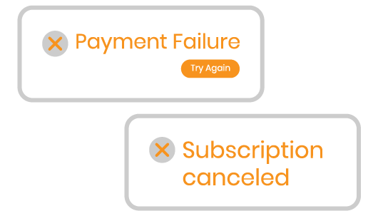 Magento 2 Subscription and Recurring Payments payment process