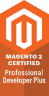 Magento 2 Professional Developer Plus