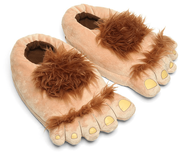 adventure slippers