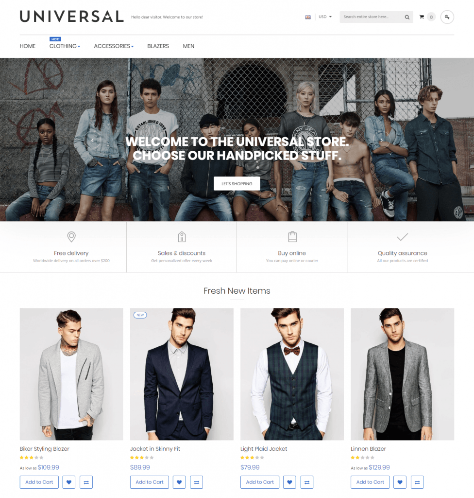 Magento 2 themes in 2020: universal