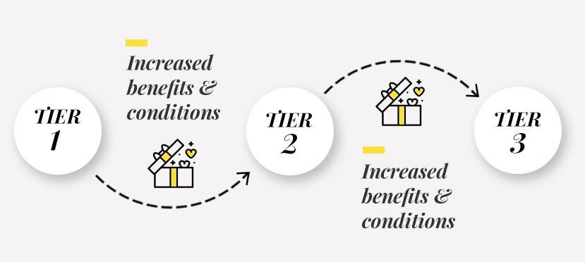 customer loyalty program: tier-based program