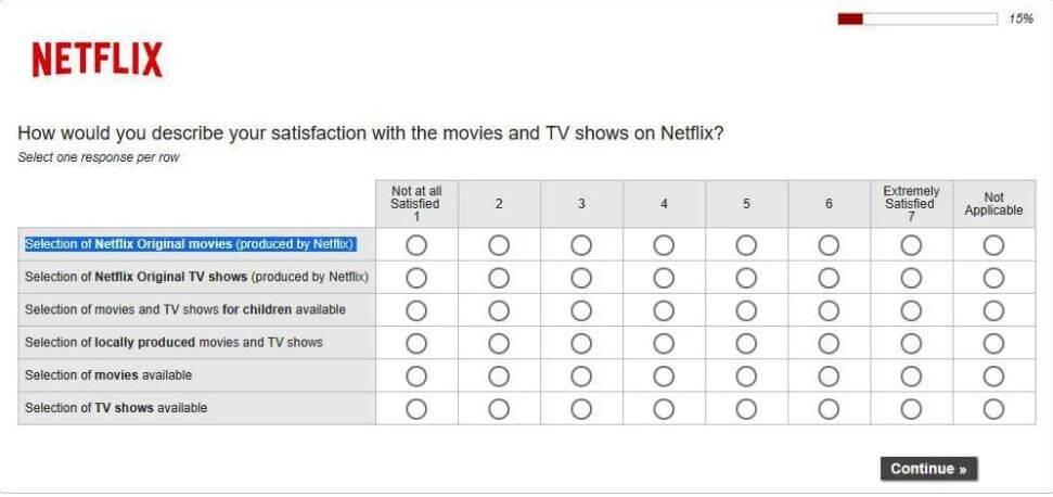 Measuring Customer Satisfaction: Netflix