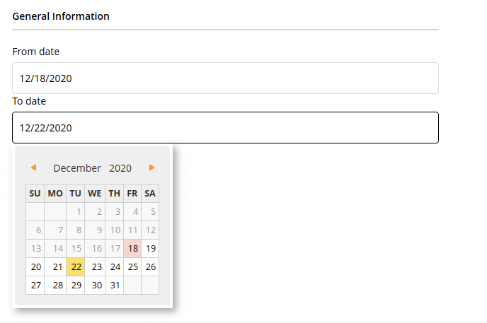 Date Selection Fields in Magento 2 frontend