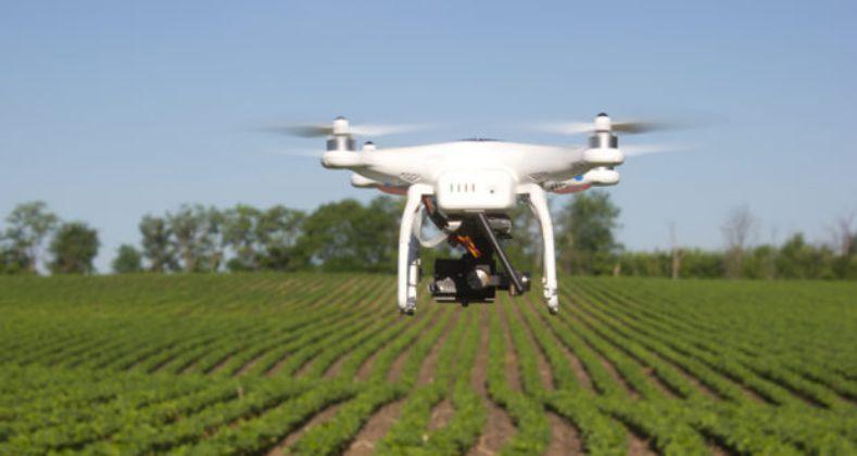 Drone rental business in farming